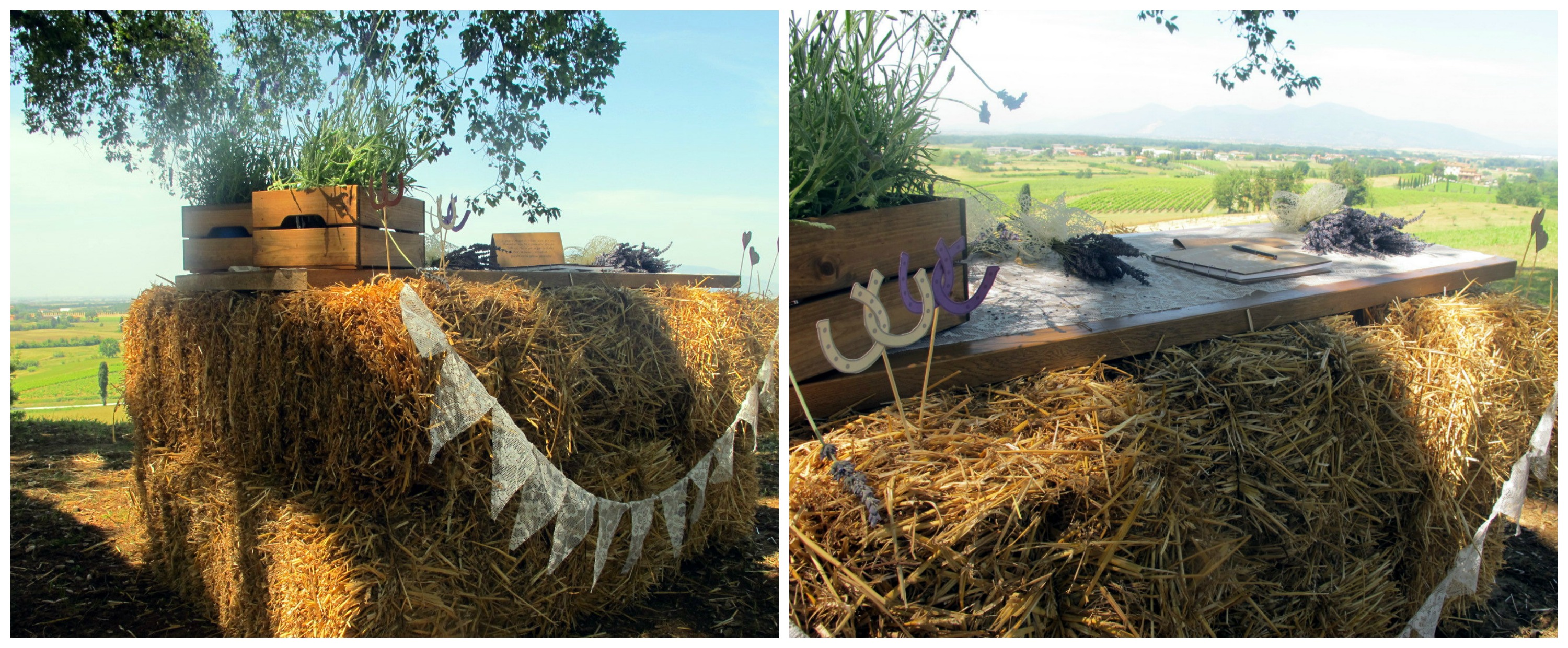 Wedding Planner Tuscany Lavender Wedding
