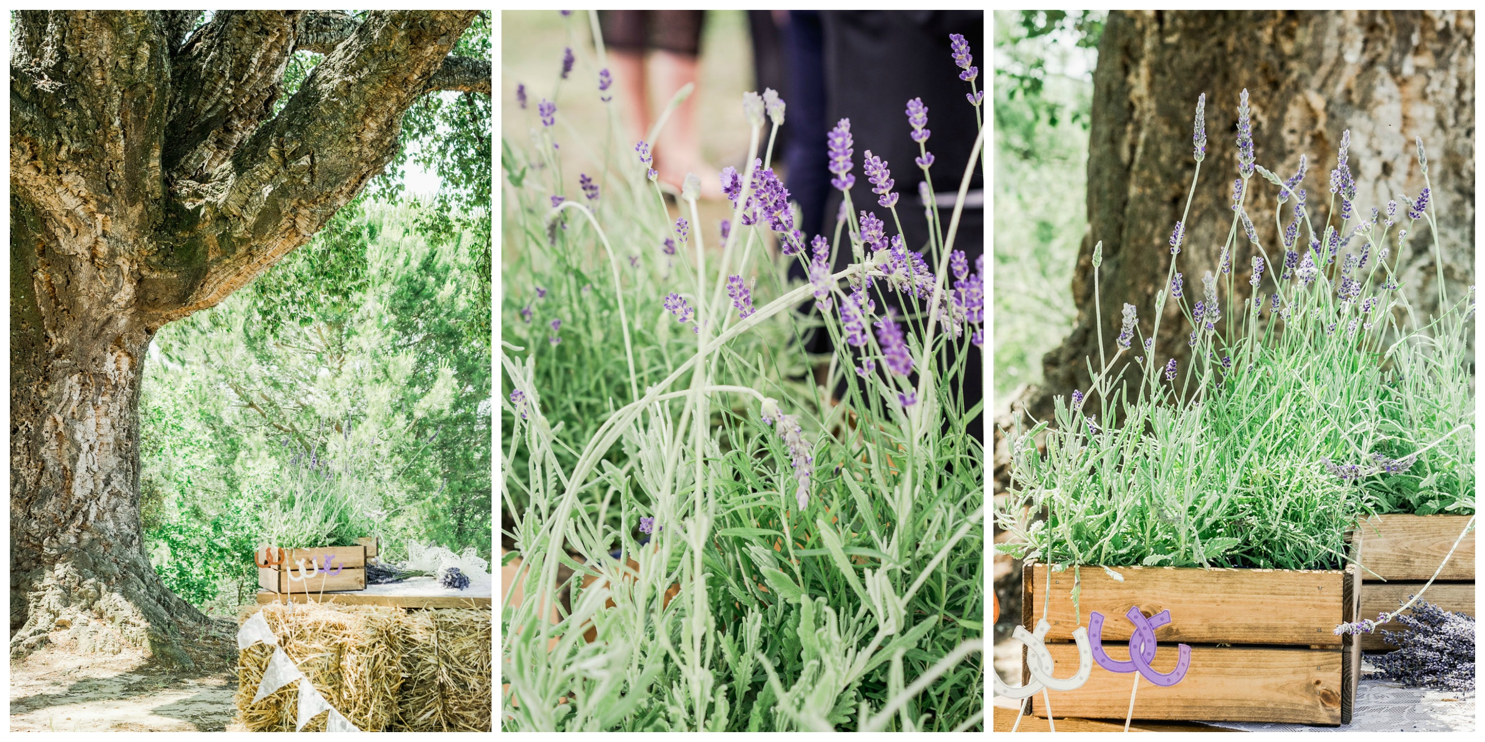 32-lavender-flowers-country-wedding